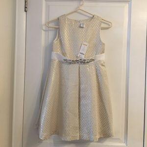 Gymboree Girl's Dress
